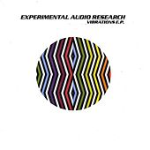 Play & Download Vibrations by Experimental Audio Research | Napster