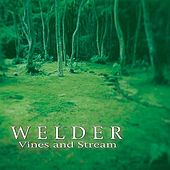 Vines & Stream by Welder