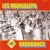 Endurance by Les Mangalepa