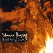 Shaman Dancing by David Antony Clark