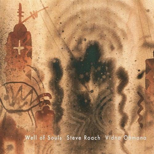 Well Of Souls by Steve Roach