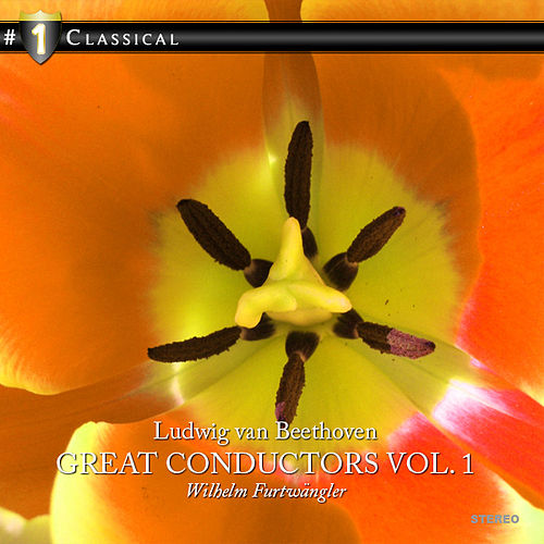 The Great Conductors Vol.1 by Various Artists