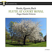 Flute at Court Royal by Prague Chamber Orchestra