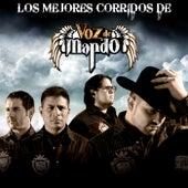 Los Mejores Corridos De by Voz De Mando