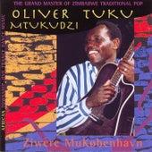 Ziwere Mukobenhavn by Oliver Mtukudzi