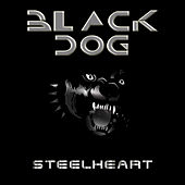 Play & Download Black Dog by Steelheart | Napster