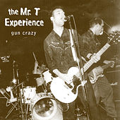 Play & Download Gun Crazy by Mr. T Experience | Napster