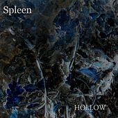 Hollow by Spleen