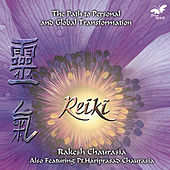 Reiki by Various Artists