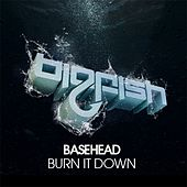Play & Download Burn It Down by Basehead | Napster