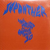 Play & Download Don't Trust Anyone Over 30 by Japanther | Napster