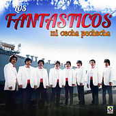 Play & Download Mi Cocha Pechocha by Fantasticos | Napster