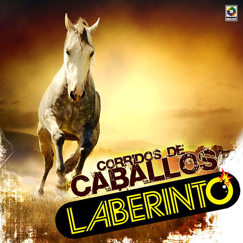 Play & Download Corridos de Caballos by Laberinto | Napster