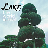The World is Real by Lake