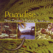 Play & Download Paradise: New Zealand's Natural Soundscape by David Antony Clark | Napster