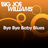 Play & Download Bye Bye Baby Blues by Big Joe Williams | Napster
