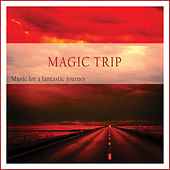 Magic Trip (Music for a Fantastic Journey) by Various Artists