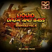 Play & Download Liquid D&B Essentials 2013 Vol.4 - EP by Various Artists | Napster