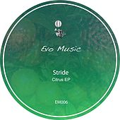 Play & Download Citrus - Single by Stride | Napster