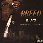 Play & Download Bang by MC Breed | Napster
