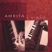 Play & Download Ê Vidão by Amrita | Napster