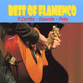 Play & Download Best Of Flamenco by Various Artists | Napster