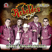 Play & Download Con Tololoche by Los Nuevos Rebeldes | Napster