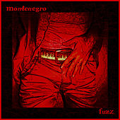 Play & Download Fuzz by Monte Negro | Napster