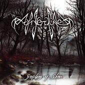 Symphony of Silence by Afterlife