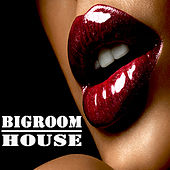 Play & Download Bigroom House (The Best Electric, Electro House, Electronic Dance, EDM, Techno, House, Techhouse & Progressive Trance) by Various Artists | Napster