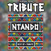 A Tribute To - Very Best of Ntando by Zooloo