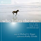 Play & Download Who Lights the Stars by Michael A. Singer | Napster