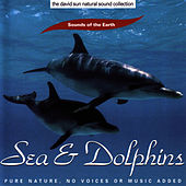 Sea & Dolphins by Sounds Of The Earth