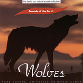 Wolves by Sounds Of The Earth