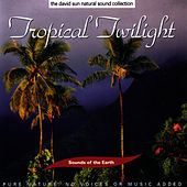 Tropical Twilight by Sounds Of The Earth
