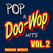 Pop & Doo Wop Hits, Vol. 2 by Various Artists