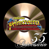 Play & Download 35 Aniversario by Various Artists | Napster