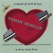 Play & Download A Touch Of Well-Being by Tommy Morgan | Napster