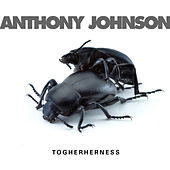 Togetherness by Anthony Johnson