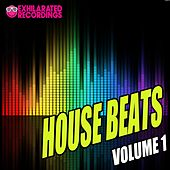 Play & Download Exhilarated Recordings House Beats Volume 1 - EP by Various Artists | Napster
