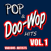 Pop & Doo Wop Hits, Vol. 1 by Various Artists