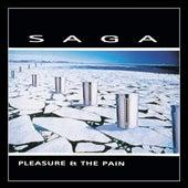Pleasure & the Pain by Saga