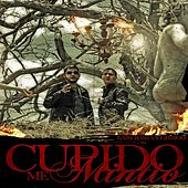Play & Download Cupido Me Mintio by Baby Rasta & Gringo | Napster