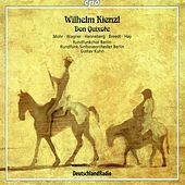 Play & Download Kienzl: Don Quixote by Thomas Mohr | Napster