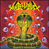 Chemistry of Consciousness (Deluxe Version) by Toxic Holocaust