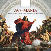 Ave Maria: Praise of the Virgin Mary Through the Centuries von Various Artists