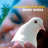 Play & Download Enamorado De La Paz by Danny Rivera | Napster