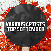 Play & Download Top September 2013 by Various Artists | Napster