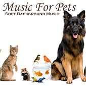 Play & Download Music for Pets - Soft Background Music - Music for Relaxation by Soft Background Music  | Napster