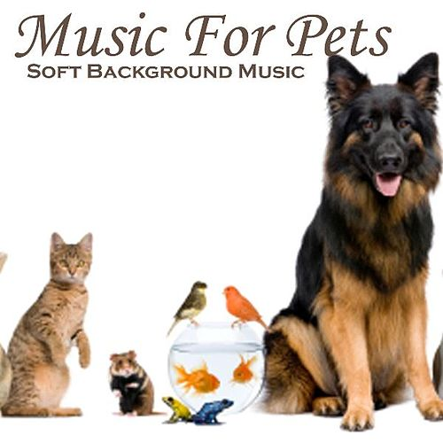 Music for Pets - Soft Background Music - Music for Relaxation by Soft Background Music